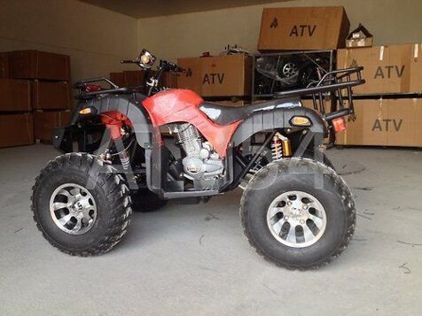 Grizzly 250cc+10""